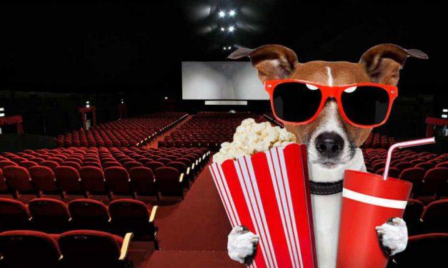 Estrenos de cine jueves 19 de septiembre de 2019